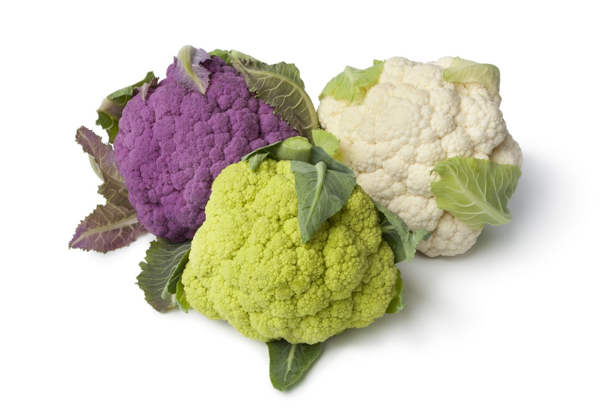 Fresh purple, green and white cauliflower on white background