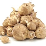 Heap of Sunchoke Vegetable, Helianthus tuberosus